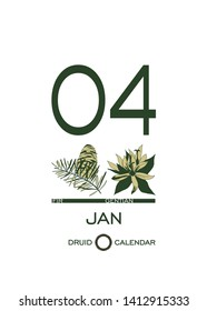 Druidic plant calendar. January 4th day corresponds to fir tree and gentian flower. Celtic astrological horoscope. Eco design for natural decor. Calendar template