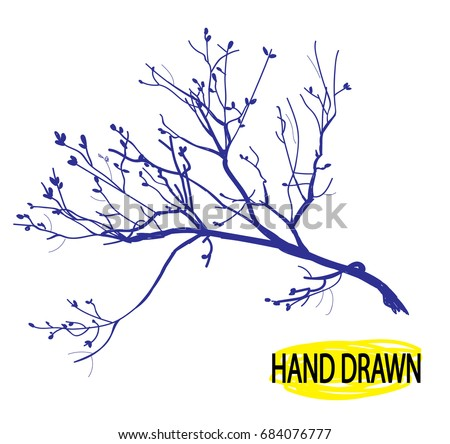 Dry Branch Tree Branch Without Leaves Stock Vector Royalty Free