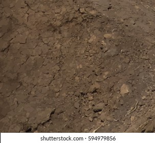 Dry cracked earth texture. Vector background