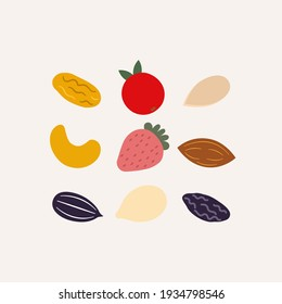 Dry fruit and mix nut set on white background. Vector illustration in flat cartoon design. Raisins, strawberry, cashew nut, almond, sunflower seed, watermelon seed, pumpkin seed.