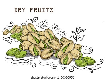 dry fruits pistachio nuts illustration vector