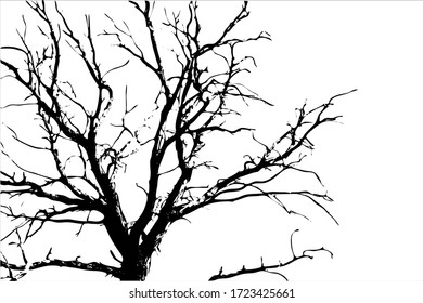 Dry tree with branches. black silhouette