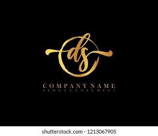 DS initial handwriting logo circle template vector