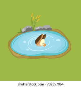 Duck dives into the pond colorful minimalistic isometric style vector illustration