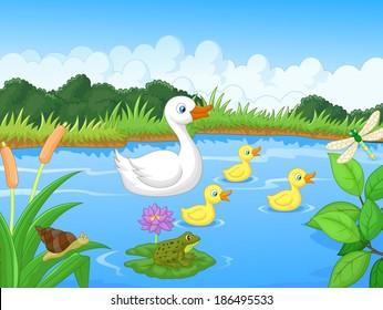 Duck Swimming Images Stock Photos Vectors Shutterstock
