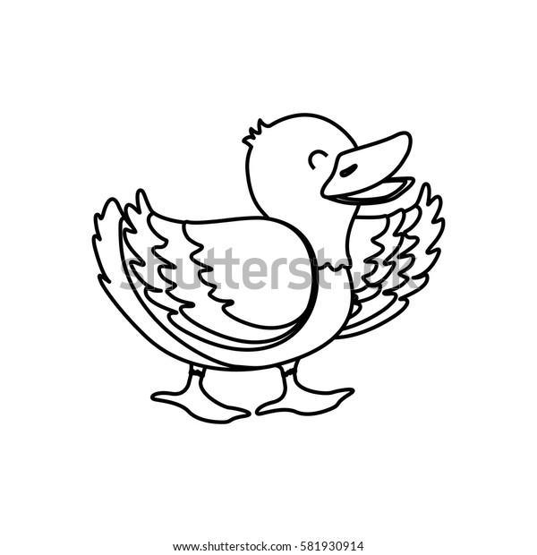 duck farm animal icon vector illustration graphic design
