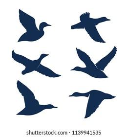 Duck, Ghoose and Hunter Logo / Illustration Vector