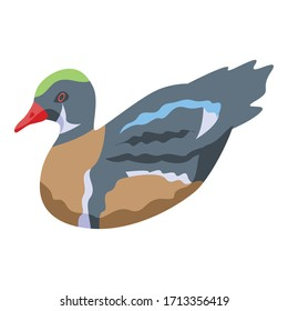 Duck icon. Isometric of duck vector icon for web design isolated on white background