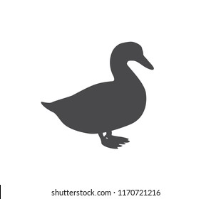 Duck icon. vector duck illustration.  Goose icon.