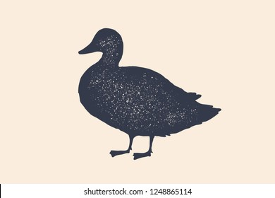 Duck, silhouette. Vintage logo, retro print, poster for Butchery meat shop, duck silhouette. Logo template for meat business, meat shop. Isolated black white silhouette duck. Vector Illustration