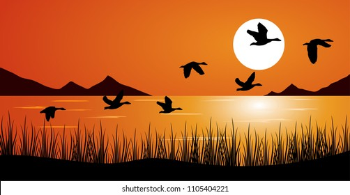 duck or teal birds flying over the lake. grass, mountain and sunset background.