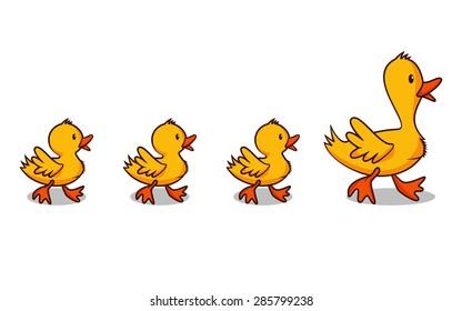 Ducks in a row, vector illustration
