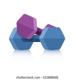 Dumbbells isolated on a white background. Dumbbell vector icon.