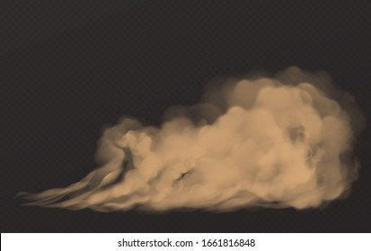Dust cloud, dirty brown smoke, heavy thick smog with motes sand and soil particles isolated on transparent background. Thunderstorm, air pollution element, Realistic 3d vector illustration, clip art