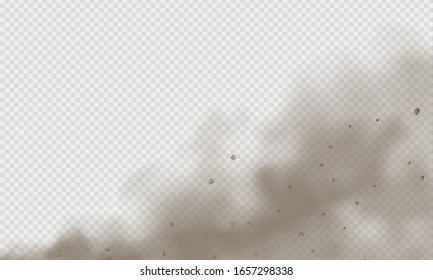 Dust cloud, sand storm, powder spray on transparent background. Desert wind with cloud of dust and sand. Realistic vector illustration