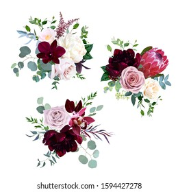 Dusty pink, mauve and creamy rose, magenta protea, burgundy and white peony flowers, orchid, pink camellia, eucalyptus, greenery, berry, marsala astilbe vector design bouquets. Isolated and editable