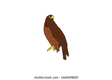 Eagle Animal Cartoon Vector Illustration