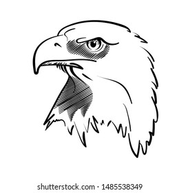 Eagle bird icon - pattern. Vintage sign for print design. USA eagle illustration. Vector image