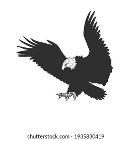 An eagle. Can be used as a sketch of a tattoo.
