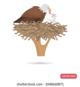 Eagle and chick in the nest color flat icon