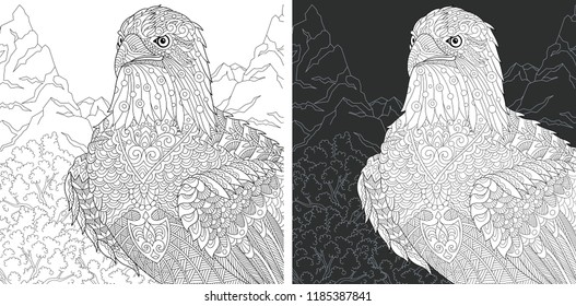 Eagle. Coloring Page. Coloring Book. Colouring picture with bald eagle drawn in zentangle style. Antistress freehand sketch drawing. Vector illustration.