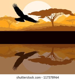 Eagle flying vector background with reflection in water