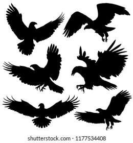 Eagle / Hawk silhouettes. Vector illustration