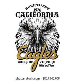 Eagle head hand drawn vector illustration, logo print for t-shirt