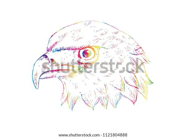 Eagle Head Logo Template Hand Draw Stock Vector (Royalty