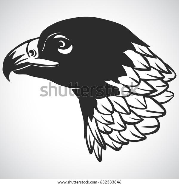 Eagle head logo Template, Hawk mascot graphic, Portrait of a bald eagle. Vector