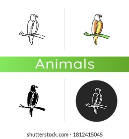 Eagle icon. Linear black and RGB color styles. Dangerous bird of prey, flying animal, winged predator. American national. Hawk, falcon sitting on tree branch isolated isolated vector illustrations
