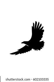 Eagle icon, Vector