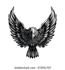 Eagle Illustration on White Background