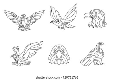 Eagle, Line vector, sign and symbol, Vector illustration.