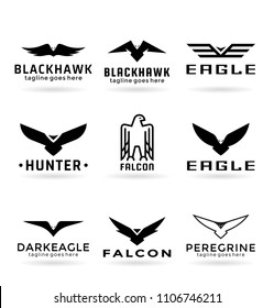 Eagle logo vector design, falcon logotype template, hawk illustration
