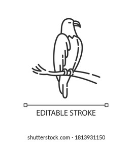 Eagle pixel perfect linear icon. Dangerous bird of prey. Thin line customizable illustration. Contour symbol. Hawk, falcon sitting on tree branch vector isolated outline drawing. Editable stroke