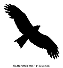Eagle silhouette isolated on white. Vector illustration