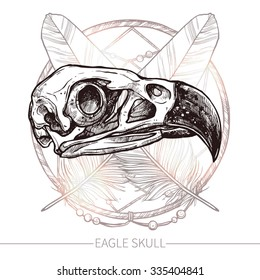 Eagle Skull. Hand Drawn Illustration