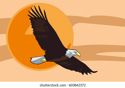 Eagle soars in the orange sky