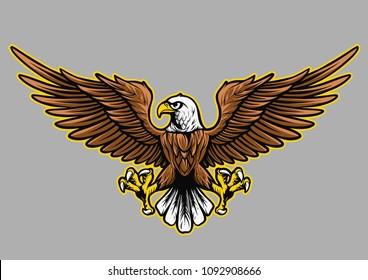 Eagle Vector Illustation