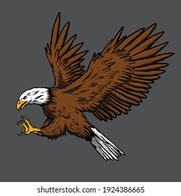 eagle vector illustration, can be used for mascot, logo, apparel and more