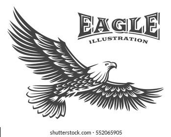 Eagle vector illustration, emblem design on white background