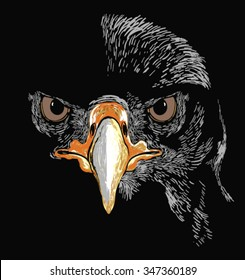 EAGLE VECTOR ILLUSTRATION.t-shirt graphics for use
