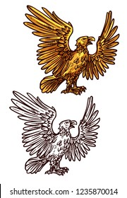 Eagle victory and power mascot. Vector heraldic golden element. Mythical bird or griffin with spread golden wings and sharp claws as symbol of strength standing in profile