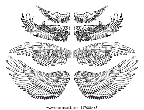 eagle wings vector drawing stock vector royalty free 117088465 https www shutterstock com image vector eagle wings vector drawing 117088465
