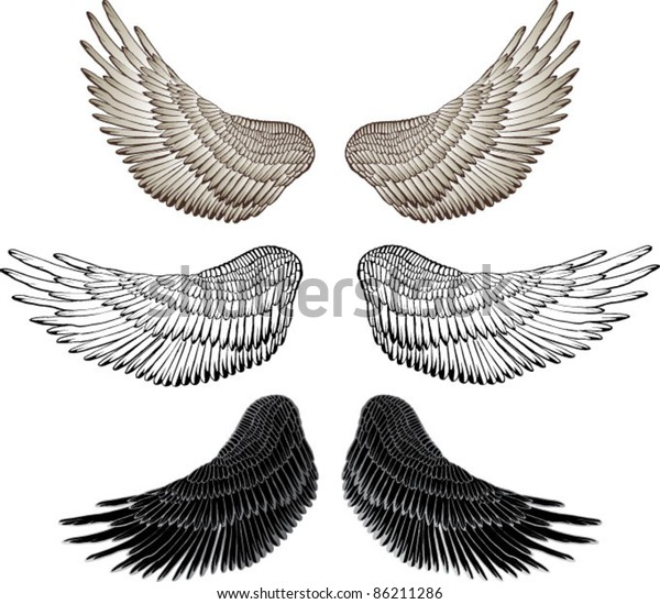 eagle wings vector drawing stock vector royalty free 86211286 https www shutterstock com image vector eagle wings vector drawing 86211286
