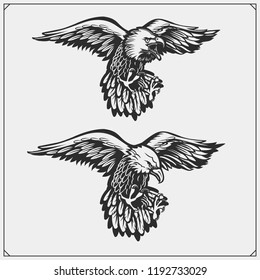 Eagles. Emblems and template for sport club design.