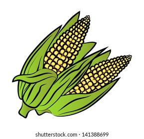 ears of corn images stock photos vectors shutterstock rh shutterstock com