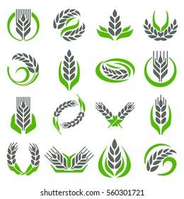 Ear spike logo badge icon wheat isolated vector. Farm nature symbol earth farmers logo design isolated on white
