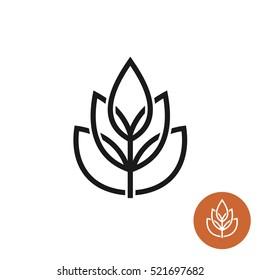 Ear of wheat linear style elegant logo. Crossed stroke lines design.